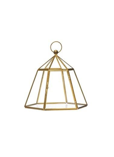Warm Design Küçük Cam Teraryum Altın